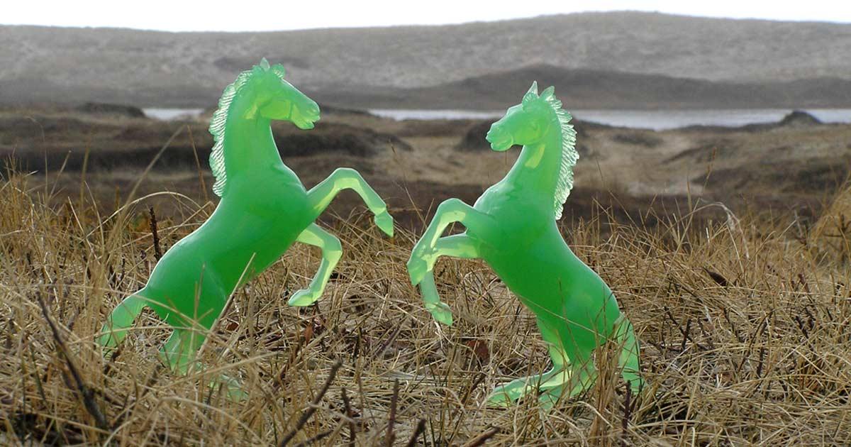 Green-horses-Sable-island-photo-zoe-lucas